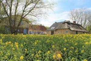 #6 Pommerby – Ostseehof Langfeld