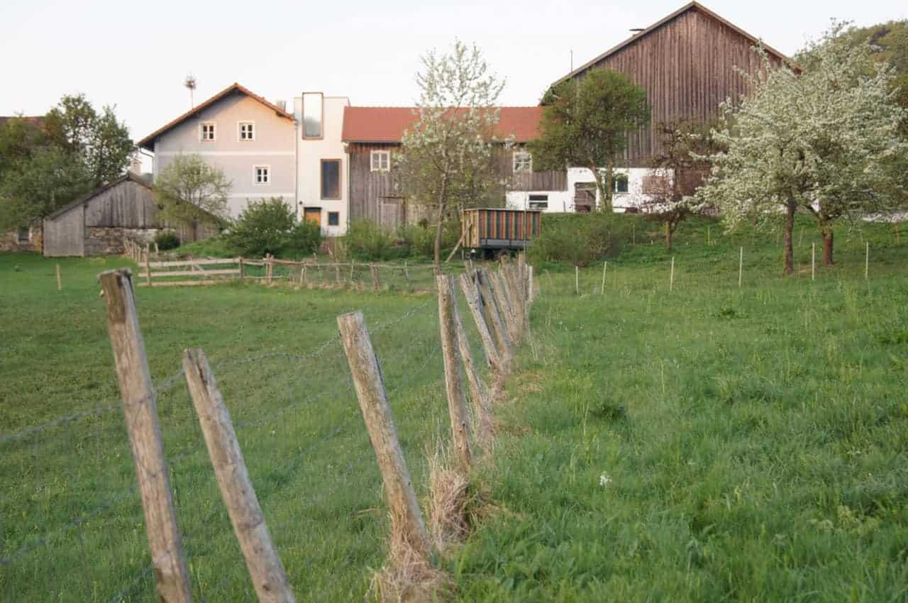 #14 Bayerischer Wald – Moosham 13